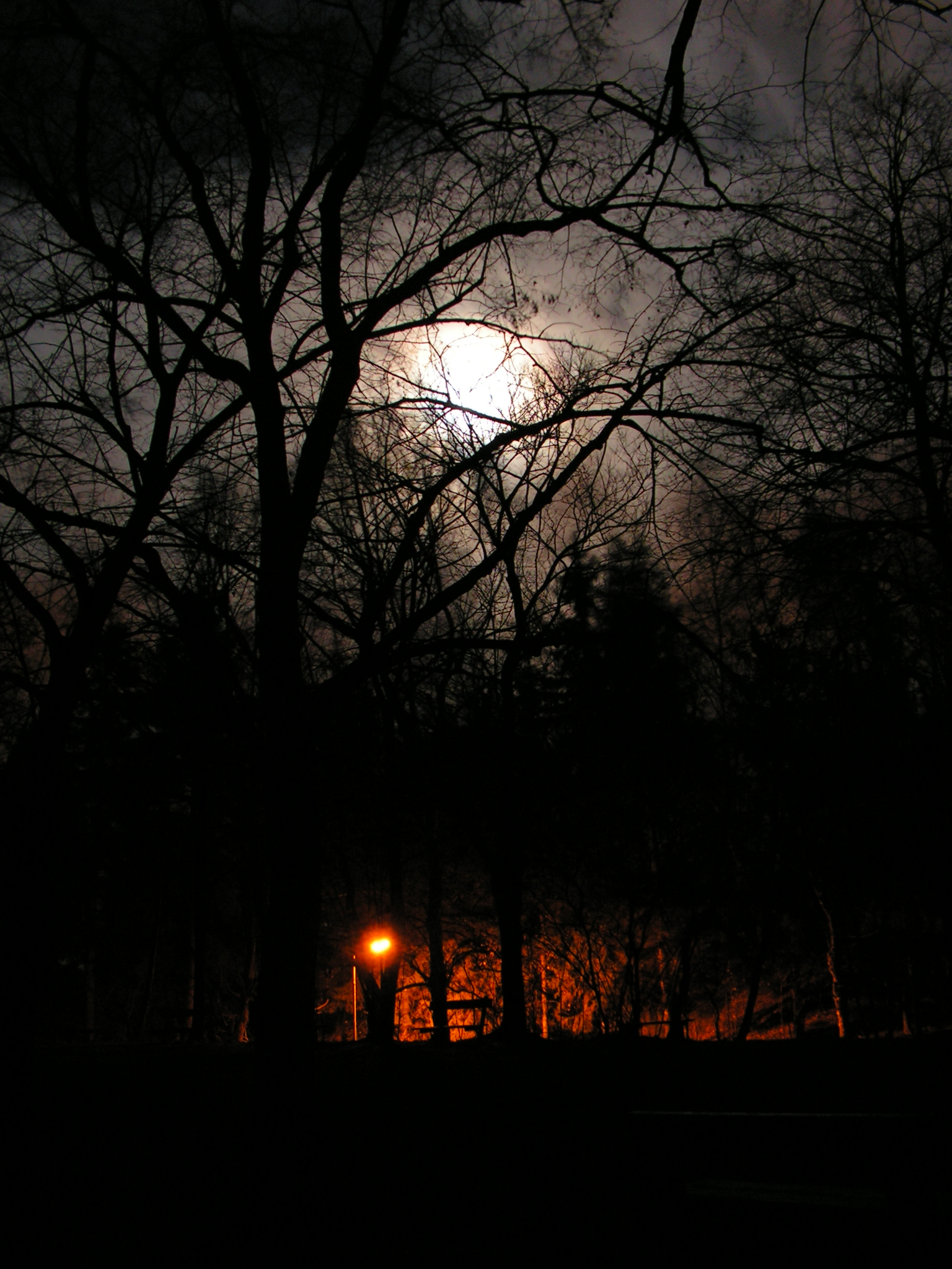 Lampy a měsíc